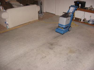 Ray S Dry Tech Of Havasu Carpet Cleaning Service Lake